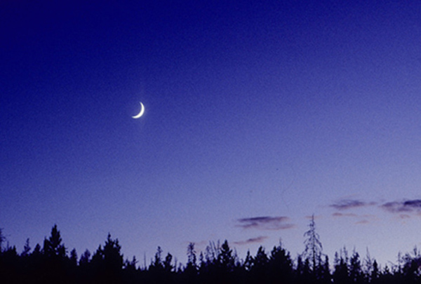 Cascadia moon photo